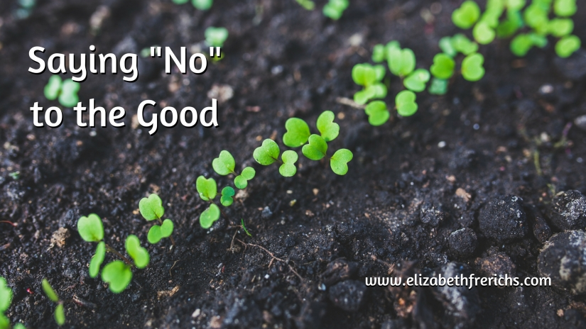Blog_ Saying No to the Good